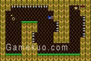 音速小子重力冒險(Sonic Gravity Adventure)遊戲圖