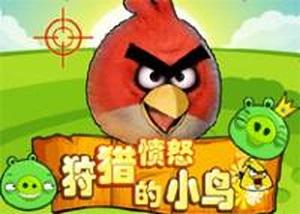 狩獵憤怒的小鳥