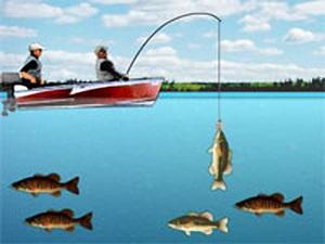 野外求生釣魚