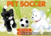 雙人寵物足球