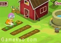 經營野菜農場
