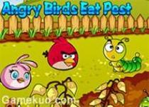 憤怒的小鳥吃害蟲