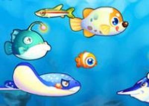 一起吃魚雙人版