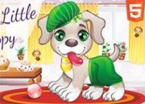 寵物狗狗裝扮